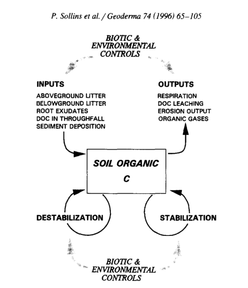 Fig 1. Sollins et al. (1996) is a fantastic paper that brings together many of the budding ideas in soil science at the time.  It is a concrete and well discussed paper on how SOM storage can be conceptualized