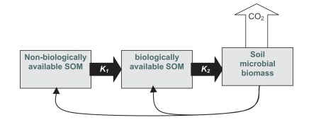 Figure 1, from Kemmitt et al (2008). DOI: 10.1016/j.soilbio.2007.06.021